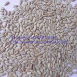 Confectionary Grade New Crop Sunflower Seeds Kernel