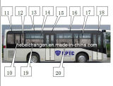 Side Window and Safety Windows for Bus