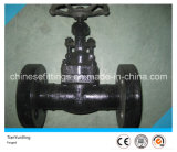 1500lbs API602 Carbon Steel Flanged Forged Gate Valve