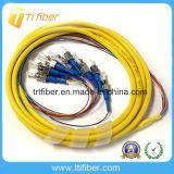 Fan out St Single Mode 12 Core Fiber Optic Pigtail