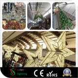 Chritmas Star Decorations Lights for Shopping Mall