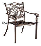 Outdoor / Garden / Patio/ Rattan/Cast Aluminum Chair HS3177c