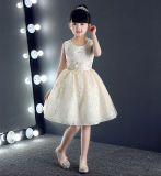Knee Length Sequin Lace Children Party Dress
