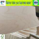 18mm White Birch Plywood for Furniture with High Quality Made in China