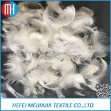 Factory Directly Provide High Quality Soft Bulk Down and Feather
