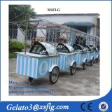 Italian Ice Cream Carts Freezers/ Street Vending Bicycle Showcase for Sale (CE)