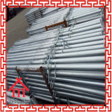 48*2.0mm Flower Plate: 120*120*4mm Surface Treatment Galvanized Shoring Prop
