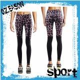Custom Made Sublimation Women′s Yoga Pants (Y001)