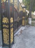 Casting Iron Gate Decorative Wrought Iron for Gates Ntirg-094s
