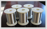 Stainless Steel Wire (304/316)