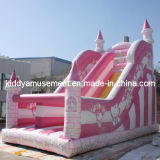 Inflatable Slide Game for Outdoor Park