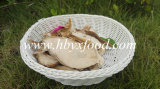 Grade C1 Dried Boletus Pure Natural Raw