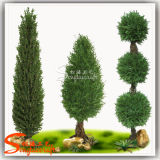 Customized Decorative Plant Artificial Pine Tree (Topiary Boxwood Plant)