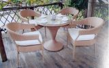 Rattan /Outdoor Furniture (GET-1014)