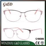 Latest New Design Metal Frame Eyewear Eyeglass Optical