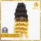 8A Grade Ombre Hair 100% Malaysian Virgin Human Hair Weft (OB-2)