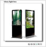 """Professional Customized 55"""" LCD Screen"""