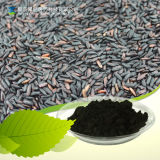 Black Rice Extract Purple Rice Extract Anthocyanin