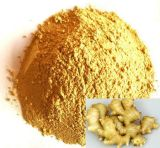 100% Natural Ginger Extract--6-Gingerol Ginger Root Extract Powder