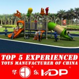 2017 New Cheap Amusement Playground Equipment (HD14-056C)