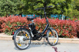 High Quality 250W/300W Motor F/R V/Drum Brake Wholesale Electric Bicycles