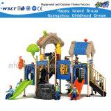 House Type Outdoor Playground Equipment Hf-16201