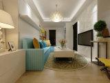 Living Room Furnitue Sofa Wall Bed Fj-R2