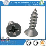 Stainless Steel Flat Head Tapping Screw