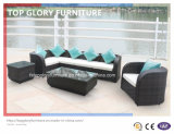 Wicker Small Corner Sofa Set for Outdoor (TG-048)