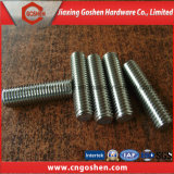 Stainless Steel 304 DIN 976 Stud Bolt