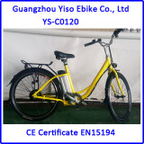 26 Inch City Electric Vehicle with Lithium Power