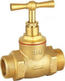 Hex Male Thread Brass Check Valve