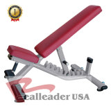 Fitness Equipent Adjustable Bench for Training Aids