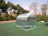 A9 Series Greenhouse for Plants and Flowers (A910)