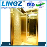 Passenger Home Elevator with Mirror Etched Stainless Steel