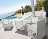Outdoor Furniture, Outdoor Chair, Rattan Furniture (DH-9014)