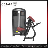 Tz-4013 CE Approved Exercise Equipment Biceps Curl Machines