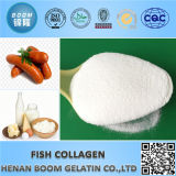 Cosmetics Many Countries Raw Material Marine Fish Collagen