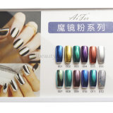 Latest Chrome Mirror Powder Mirror Effect Powder Nails Pigment (D87)