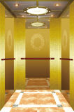 Fujizy Passenger Elevator with En81 Certificate Fjk8000-3