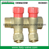 OEM&ODM Quality Brass Forged 2-Way Manifold (AV9070)