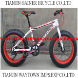 "20"" Snow Bicycles/ MTB Bicycles 7s"