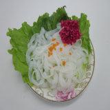 Asian Health Food Shirataki Fettuccine Slimming Noodles