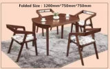 Foldable Ash Solid Wood Dining Table and Chairs