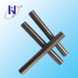 Tungsten Carbide Rods with Two Straight Coolant Holes