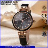 OEM/ODM Hot Sale Leather Strap Quartz Ladies Watch (Wy-100E)