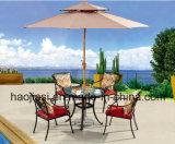 Outdoor /Rattan / Garden / Patio / Hotel Furniture Cast Aluminum Chair & Table Set (HS 3185C &HS 6001DT)