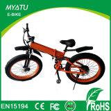 26inch 36V Lady′s Electric-City-Bike/E-Bike