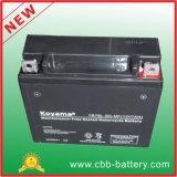 12V7ah Yb7bl-BS-Mf Sealed Maintenance Free Motorcycle Battery