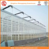 Flower/Fruit/Vegetables Growing Polycarbonate Sheet Greenhouses with Sunshade System